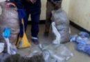 Gakenke: Abagabo 2 bafatanywe Kanyanga, urumogi n'amaduzeni 20 y'inzoga zitemewe mu Rwanda